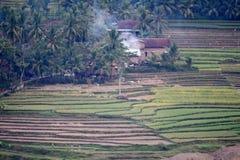 Деревня Tugu взгляда в Trenggalek, Индонезии стоковое фото rf