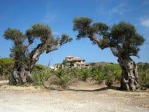 Деревня Vasilikos, остров Закинфа, южная Греция Стоковое фото RF