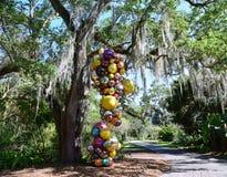 Дерево болота Флориды в тропических установках Стоковое фото RF
