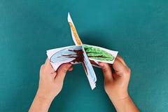 Дерево бумаги Diy 4 сезона лето, осень, зима, весна Сезон дерева 4 Творческие способности детей стоковое изображение rf