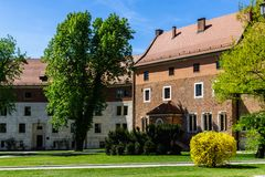 Дерево весны зеленое перед старым зданием на замке Wawel, Crac Стоковая Фотография RF
