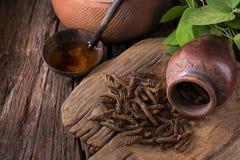 Дерево винта восточного индейца и чай, тайская трава для здоровья на деревянном b Стоковая Фотография RF
