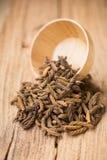 Дерево винта восточного индейца, тайская трава для здоровья на деревянном backgroun Стоковое Фото