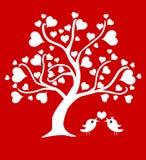 Дерево влюбленности Стоковые Фотографии RF