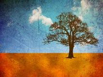 Дерево в ландшафте grunge Стоковое фото RF