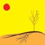 Дерево в лете засухи Стоковая Фотография RF