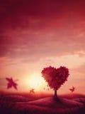 Дерево влюбленности сердца Стоковое Изображение