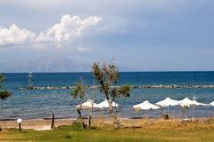Дерево, голубое море, горы и облака Стоковое фото RF