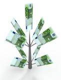 Дерево денег от евро деньги принципиальных схем чалькулятора дела Стоковая Фотография