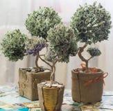 Дерево денег сделанное долларов Стоковые Фото