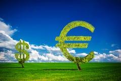 Дерево денег стоковая фотография rf