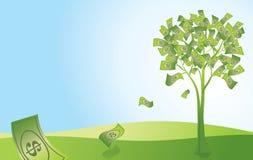 Дерево денег Стоковые Фото