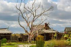 Дерево желаний с красочными лентами перед старой деревянной сторожевой башней Стоковые Изображения