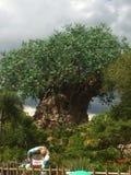 Дерево жизни Стоковая Фотография RF