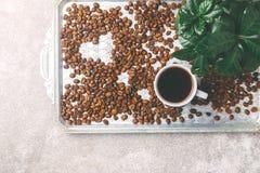 Дерево завода кофе, эспрессо и зажаренные в духовке кофейные зерна Взгляд сверху Стоковая Фотография RF