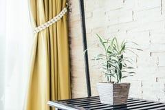 Дерево завода вазы Стоковое Изображение