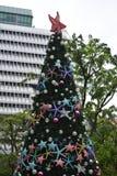 Дерево звезды рождества Стоковая Фотография
