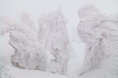 Дерево изверга снега, Mt Hakkoda, Aomori, Япония Стоковые Фото