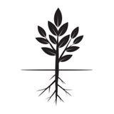 Дерево и корни также вектор иллюстрации притяжки corel Стоковое фото RF