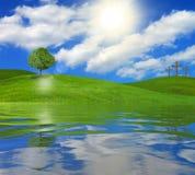Дерево и кресты на береге озера стоковое изображение rf