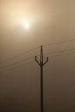 Дерево и мост зимы в тумане Стоковое Изображение RF
