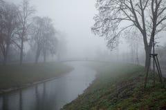 Дерево и мост зимы в тумане Стоковое фото RF