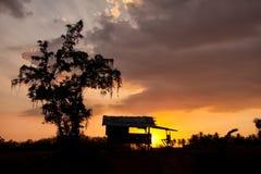 Дерево и дом затеняют диаграммы на заходе солнца Стоковые Фото