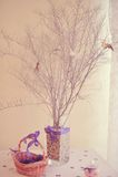 Птицы на ветвях Стоковое фото RF