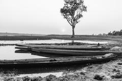 Дерево и река шлюпки стоковые изображения