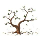 Дерево иллюстрации для шаржа Стоковые Фотографии RF