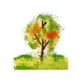 Дерево, иллюстрация Стоковое Фото