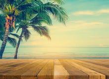 Дерево кокоса на пляже Стоковые Изображения