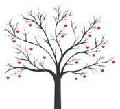 Дерево красный висеть сердец Стоковое Изображение