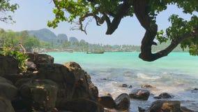 Дерево кривой и залив утесов тропической глуши пляжа Прибой лазурного моря в Таиланде видеоматериал