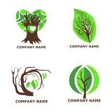 дерево логотипа с зелеными листьями Стоковые Изображения RF