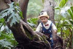 Дерево мальчика взбираясь стоковая фотография