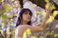 Дерево молодой женщины взбираясь стоковое изображение rf