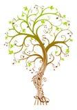 Дерево музыки Стоковая Фотография
