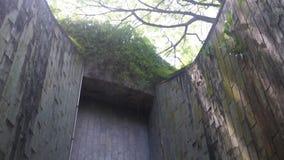 Дерево над тоннелем дорожка кирпича на парке акции видеоматериалы