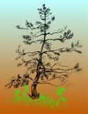 Дерево нарисовано вручную иллюстрация штока