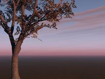 Дерево на горизонте Стоковое фото RF