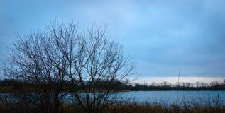 Дерево на заходе солнца озера с облаками стоковое фото