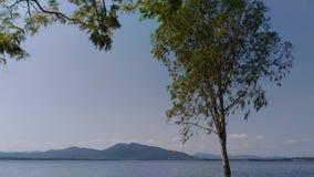 дерево на небе реки и горы милом Стоковые Изображения RF