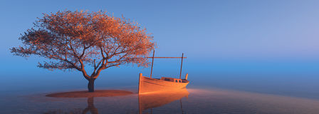 Дерево на пляже Стоковые Фото