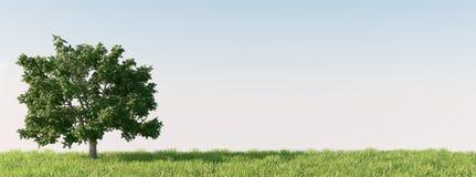 Дерево на лужке иллюстрация вектора