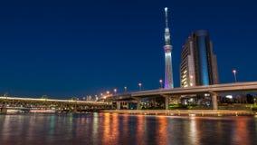 Дерево неба Токио Стоковые Фотографии RF