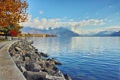 Дерево осени в обваловке городка Vevey и женевского озера, Швейцарии Стоковое Изображение RF
