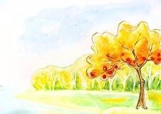 Дерево осени. Картина акварели. иллюстрация штока
