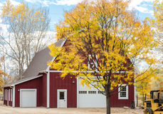 Дерево осени красным амбаром Стоковое Фото