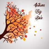 Дерево осени с падая листьями на белой предпосылке Элегантный дизайн с космосом текста и идеальными сбалансированными цветами Иллюстрация штока